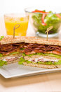 Two sandwiches on plate with juice and salad bowl Royalty Free Stock Photo