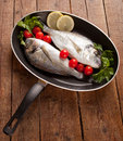 Two sea bream pan Royalty Free Stock Image