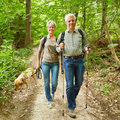 Two seniors walking with dog in forest smiling their a summer Royalty Free Stock Image