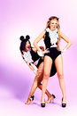 Two sexy playgirls in costumes of pussycat and a mouse alluring over pink background Stock Photography