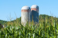 Two Silos with corn in foreground Royalty Free Stock Image