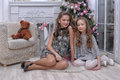 Two sisters near a Christmas tree Royalty Free Stock Photography