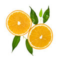 Two slice of orange with leaves Royalty Free Stock Photo
