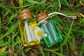 Two small glass bottles with oil among white daisies lie on green grass Royalty Free Stock Photo