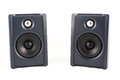 Two Speaker in isolated Royalty Free Stock Photo