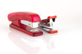 Two staplers on white background Stock Photos