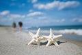Two starfish on sea ocean beach in Florida, soft gentle sunrise Royalty Free Stock Photo