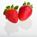 Two strawberries Stock Image