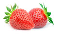 Two strawberries with leaves isolated Royalty Free Stock Photo