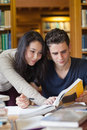 Two students studying in a library Royalty Free Stock Photo