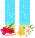 Two summer vertical banners sand banner with pebble stones seashells and tropical flowers Stock Photos