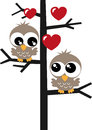 Two sweet owls in a tree love Stock Photo