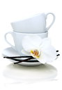 Two teacups, vanilla and flower. Stock Photography