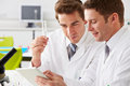 Two technicians working in laboratory holding a test tube Royalty Free Stock Photos