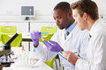 Two technicians working in laboratory looking at test tube Stock Images