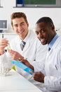 Two technicians working in laboratory smiling Stock Image