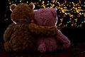 Two teddie bear sitting holding bokeh background in the dark Stock Images