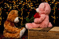 Two teddie bear with white with red rose sitting bears bokeh background Royalty Free Stock Photo