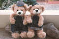 Two teddy bears on wood background