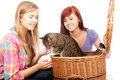 Two teenage girls  with cat in wicker basket Stock Photos