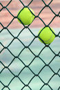 Two tennis balls the in wire grid Stock Photo