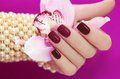 Two tone manicure from light and dark cherry red polish on women s hand Royalty Free Stock Image
