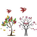 Two trees with birds beautiful colorful leafs in autumn and Stock Images