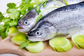 Two trouts with greens on the board Royalty Free Stock Image
