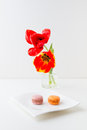 Two tulip flowers and two macaroon cookies.