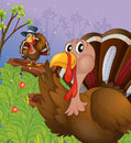 Two turkeys in the forest illustration of Royalty Free Stock Photo