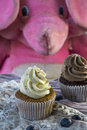 Two vanilla and chocolate cupcakes with blueberries and pink toy elephant Royalty Free Stock Photo