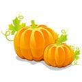 Two Vector Pumpkin