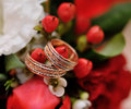 Two wedding rings on bridal bouquet Stock Photography