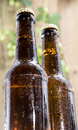 Two wet bottles of Beer on wood Royalty Free Stock Images