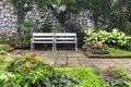 Two white benches inside garden Royalty Free Stock Photo