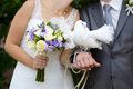 Two white birds - pigeons - on hands of bride and groom Royalty Free Stock Photo