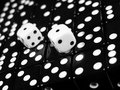 Two White Dice Royalty Free Stock Photos
