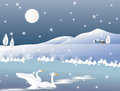 Two white swans on background winter Royalty Free Stock Photos