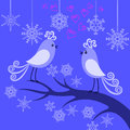 Two winter birds in love Royalty Free Stock Photography