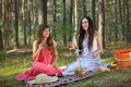 Two woman relax on picnic women relaxing in outdoor in forest Stock Images