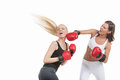 Two women boxing young while isolated on white Stock Photo