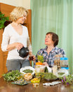 Two women brewing herbal tea smiling aged with medicinal herbs at home Stock Photography