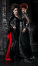 Two women in fetish costumes Royalty Free Stock Photo