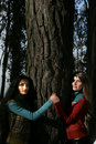 Two women hugging a tree Royalty Free Stock Image