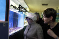 Two women at oceanarium watching fishes an Stock Photos
