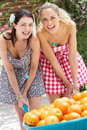 Two Women Pushing Wheelbarrow Filled With Oranges Royalty Free Stock Image
