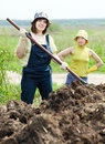 Two women works with  manure Stock Photo