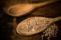 Two wooden spoons with sunflower seeds on wood surface Stock Images
