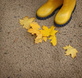 Two yellow gumboots and fallen yellow leaves a pair of isolated in the sand after rain Royalty Free Stock Photos