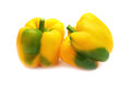 Two yellow peppers paprika Royalty Free Stock Photo